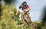 Downhill-Freeride Bikes