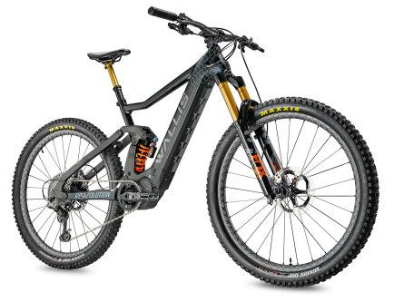 Wallis Carbon E-Enduro DHX